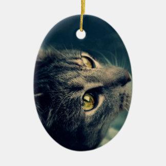 Vintage Yellow-Eyed Cat looking up Above Ceramic Oval Decoration