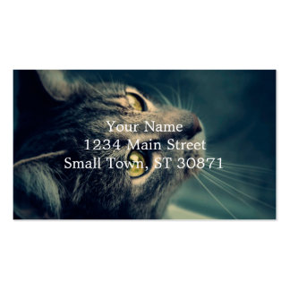 Vintage Yellow-Eyed Cat looking up Above Pack Of Standard Business Cards