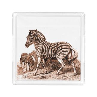 Vintage Zebra Engraving Perfume Tray