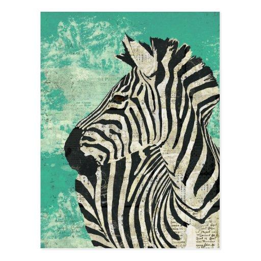 Vintage Zebra Turquoise Postcard