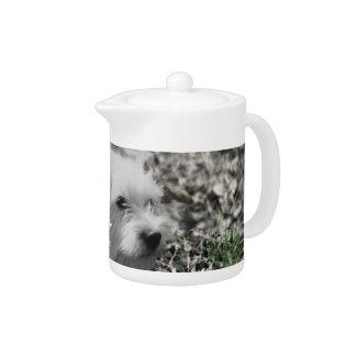 Violet in Flowers – White Westie Dog