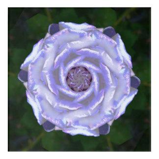 Violet Rose Acrylic Wall Art