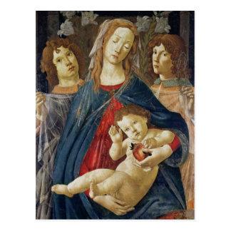 Virgin of the Pomegranate Postcard