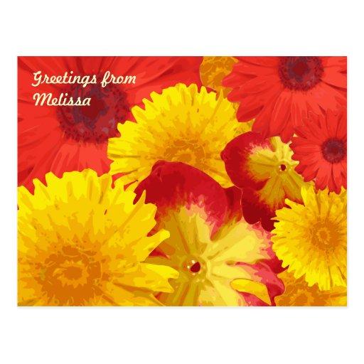 Vivid Bright Red Daisies Yellow Chrysanthemums Post Card