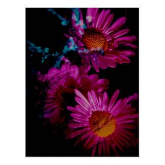 Vivid Floral Photo Postcard