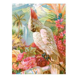 Vivid Flowers and a Cockateil Postcard