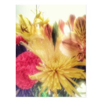 Vivid Flowers Postcard