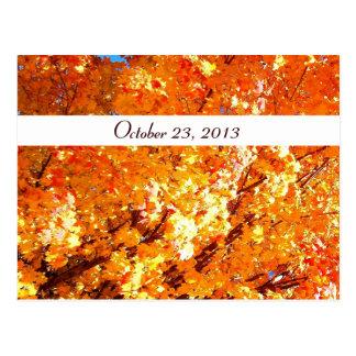 Vivid Orange Leaves Save the Date Postcard