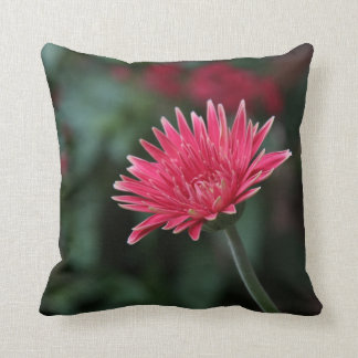 Vivid Pink Gerbera Daisy on Green Background Cushion