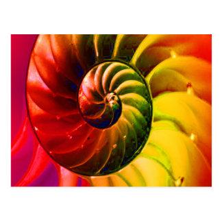 Vivid Seashell Swirly In Techno Color Postcard