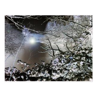 Vivid Winter Postcard