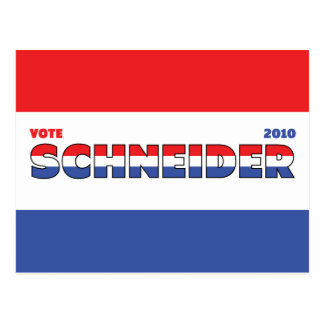 Vote Schneider 2010 Elections Red White and Blue Postcard