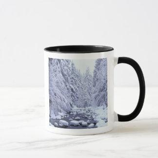 WA, Mount Baker-Snoqualmie National Forest, Mug