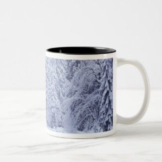WA, Mount Baker-Snoqualmie National Forest, Two-Tone Coffee Mug