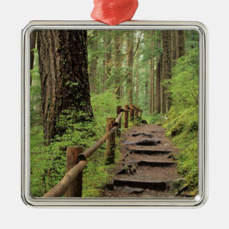 WA, Olympic NP, Sol Duc Valley, rainforest Christmas Ornament