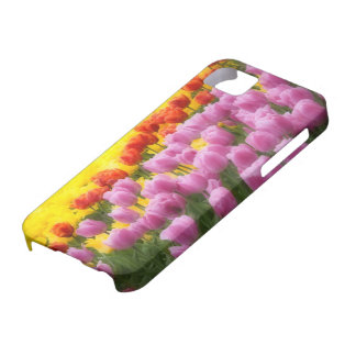 WA, Skagit Valley, Roozengaarde Tulip Garden, 2 Barely There iPhone 5 Case