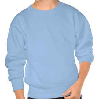 Wait. Wut? Seriously? Pull Over Sweatshirts
