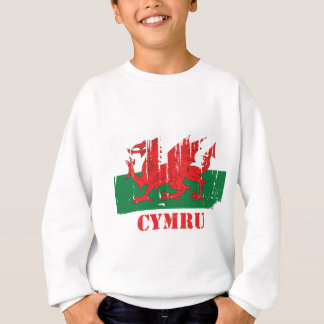 Wales Flag Sweatshirt