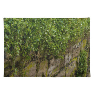 Wall Of Ivy Placemat