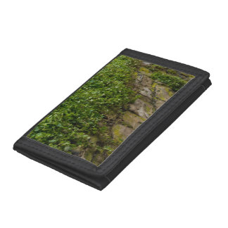 Wall Of Ivy Trifold Wallet
