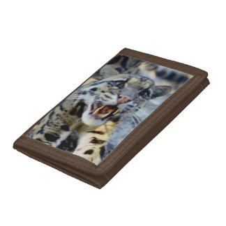 Wallet - clouded leopard