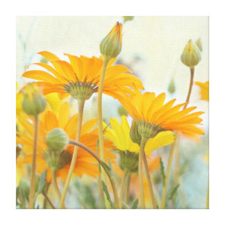 Warm in the Sun-Orange Yellow Daisy Wrapped Canvas Stretched Canvas Prints