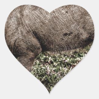 Warthog. Heart Sticker