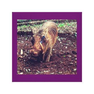Warthog in Kenya Canvas Print