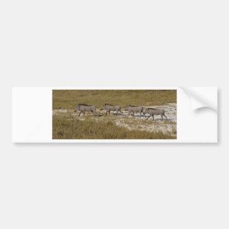 Warthog Parade Tom Wurl Bumper Sticker