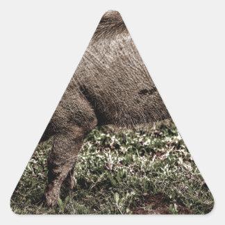 Warthog. Triangle Sticker