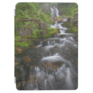 Washington, Mount Rainier National Park 2 iPad Air Cover