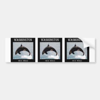 Washington Orca Whale Bumper Sticker