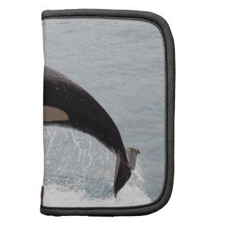 Washington Orca Whale Planners