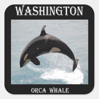 Washington Orca Whale Square Sticker