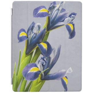 Washington, Redmond, Purple Irises iPad Cover