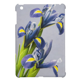 Washington, Redmond, Purple Irises iPad Mini Covers