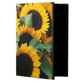 Washington, Seattle, Sunflower for sale pike iPad Air Case