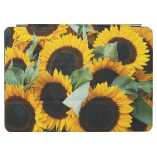 Washington, Seattle, Sunflower for sale pike iPad Air Cover