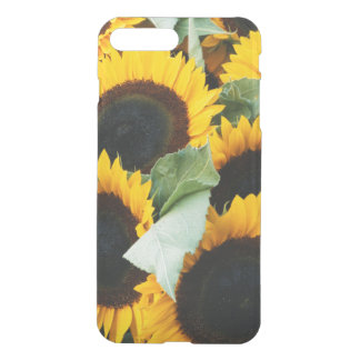 Washington, Seattle, Sunflower for sale pike iPhone 8 Plus/7 Plus Case