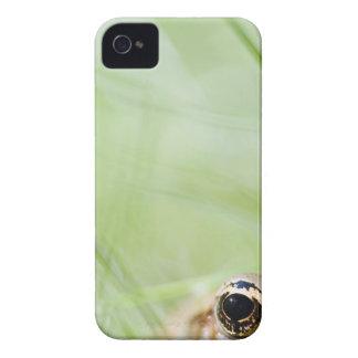 Washington, USA iPhone 4 Case
