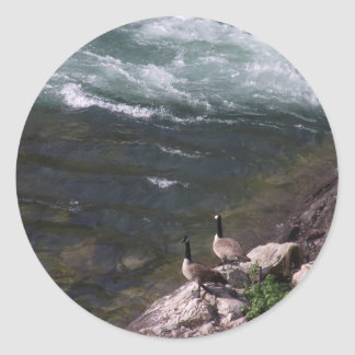 Watauga Lake and geese at Wilbur Dam Classic Round Sticker