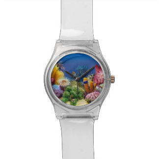 WATCH CORAL REEF