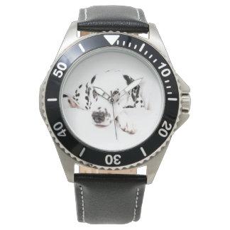 Watch Dalmatiner