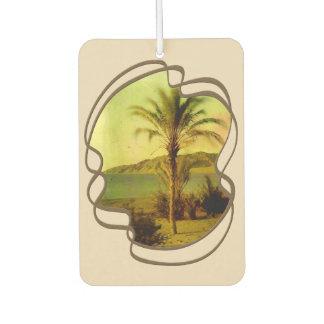 Water Baby Vintage Palm Air Freshener
