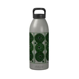Water Bottle Sea Urchin #1/set of 3 - ANDREA BRAND