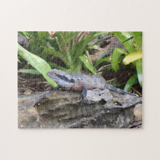 Water Dragon Puzzle