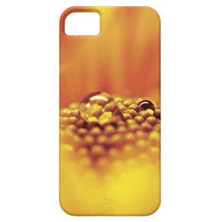 Water drops barely there iPhone 5 case