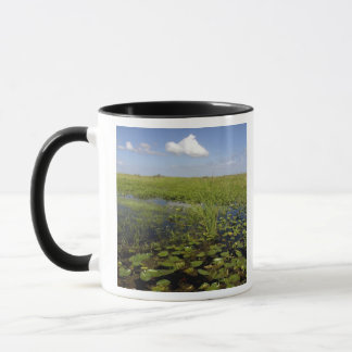 Water lilies and sawgrass in Florida everglades Mug