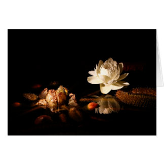 Water Lily at Night Card