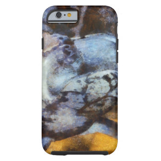 Water tank and turtle tough iPhone 6 case